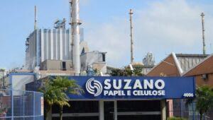Suzano: BNDES avalia venda de fatia na empresa; ações recuam