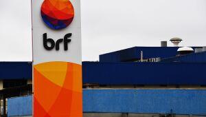BRF sobe 4% com autorização para exportar carne suína para Myanmar