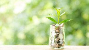 Ativos alternativos sustentáveis descorrelacionam a carteira e vinculam lucro a causas nobres