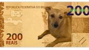 Banco Central faz anúncio com vira-lata caramelo sobre cédula de R$ 200