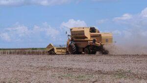 Calendário de balanços: Copel, SLC Agrícola, Hapvida reportam esta semana