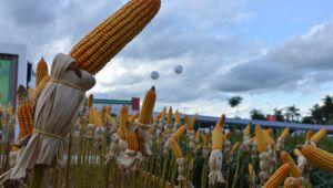 Faesp: aumento da Selic encarecerá crédito rural