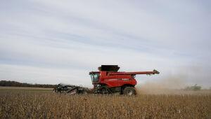 Soja atinge mínima de 9 meses em Chicago; trigo firma e milho enfraquece