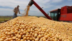 Importações chinesas de soja do Brasil crescem 10,9% em agosto ante 2020