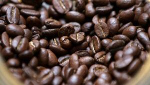 Conab reduz previsão de safra de café do Brasil, apesar de recorde no canéfora