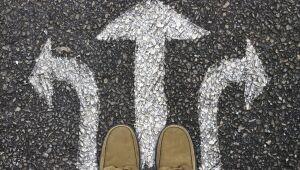 Decisão de investimento: a maneira com que você escolhe interfere nos seus resultados