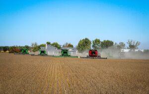 Agronegócio brasileiro alimenta 772 milhões de pessoas no mundo e atrai investidores