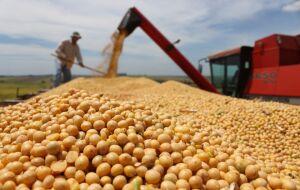 Mato Grosso semeia 0,28% da safra de soja 21/22 na 1ª semana de plantio, diz Imea