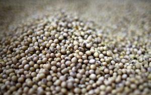 EUA vendem 132 mil toneladas de soja para China e 722,75 mil t a destinos desconhecidos para 21/22