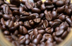 Estoques de café verde nos EUA caem em 107.561 sacas