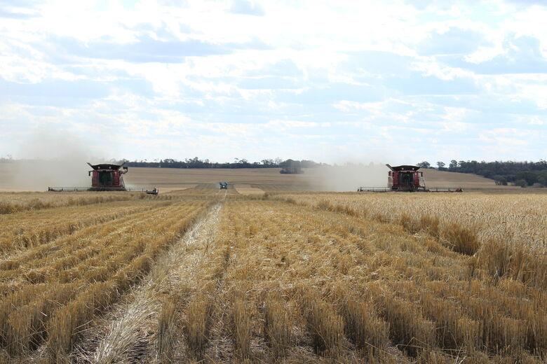 Colheita de trigo na Austrália