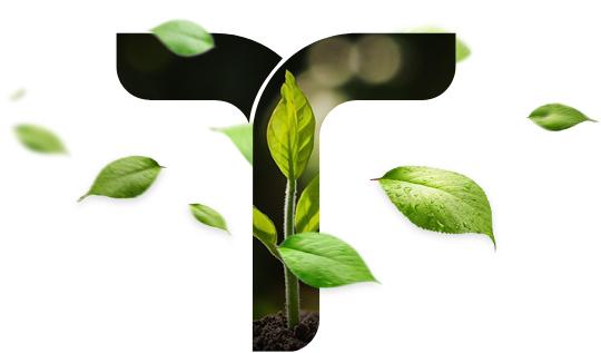 Grupo Vittia Fertilizantes